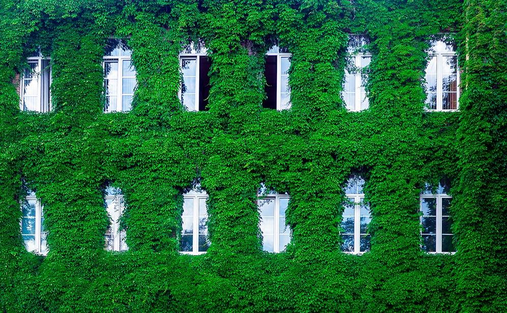 sostenibilidad en el exterior de las viviendas